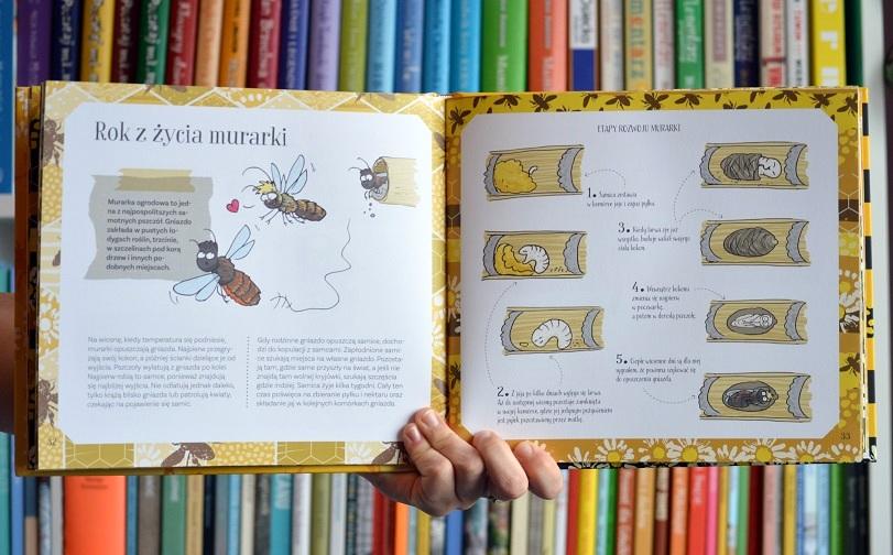 Pszczoły miodne iniemiodne Justyna Kierat