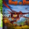 Nogi za pas Reiner Knizia Tomek Larek Grzegorz Molas Nasza Księgarnia